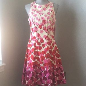 Nwt Maggy London floral dress size 8